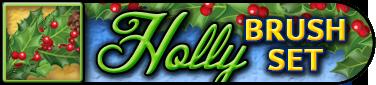 HollyBrushSoloBar